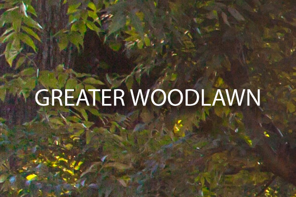 ~GREATER-WOODLAWN