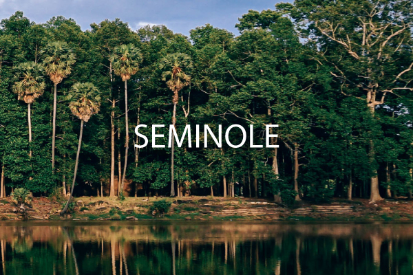 neighborhood guide Seminole