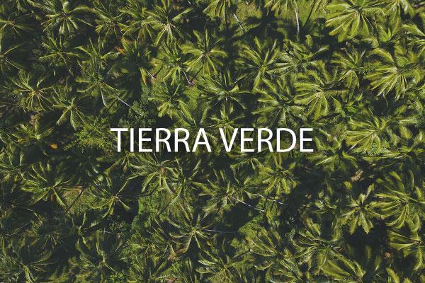 neighborhood guide Tierra Verde